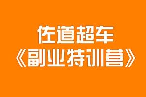 佐道超车副业特训营课程 13集