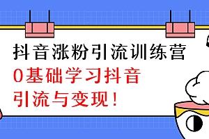陈江雄抖音涨粉引流训练营,0基础学习抖音引流与变现