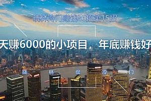 晓林冷门赚钱第15招:10天赚6000的小项目 年底赚钱好项目