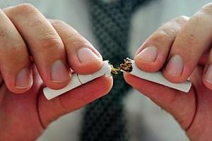 戒烟蓝海项目,对接淘客被动营收(附数据)
