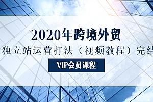 2020年跨境外贸独立站运营打法(视频教程)